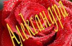 Значение имени александра (саша), его происхождение, характер и судьба человека, формы обращения, совместимость и прочее